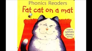 FAT CAT ON A MAT BOOK KIDS READING