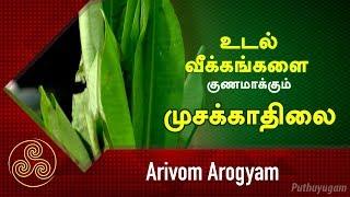 Arivom Arogyam Puthuyugam TV Show