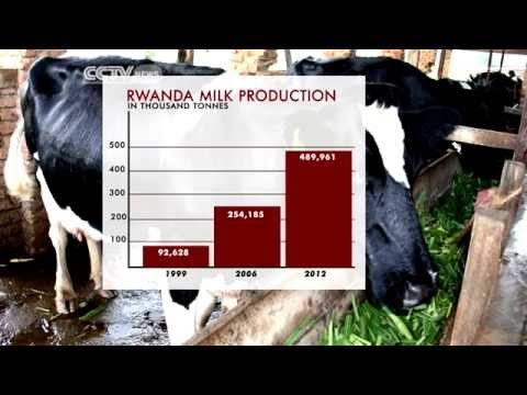 Rwanda's Inyange Industries