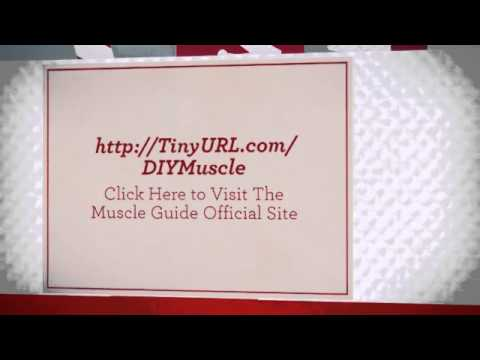 Christmas Deals on Gain Muscle Program Guides