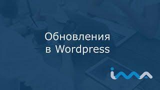 Wordpress с нуля | Урок 9. Обновления в Wordpress | WP-Staging