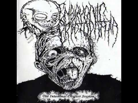 Embryonic Cryptopathia  - The Intestinal Disgust Session [Full]