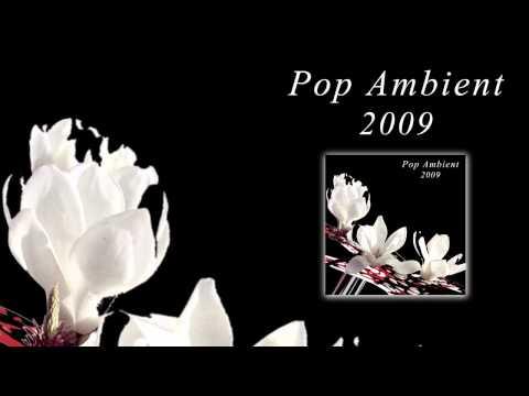 Sylvain Chauveau - Nuage Iii 'Pop Ambient 2009' Album