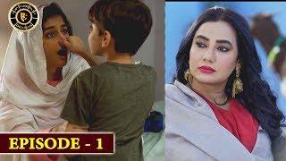 Damsa Episode 1 |  Nadia Jamil & Shahood Alvi | Top Pakistani Drama