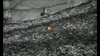 Der Grüne Bogenschütze