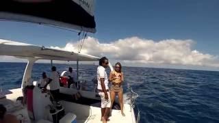 TopCat, Best Catamaran Cuise in Mauritius