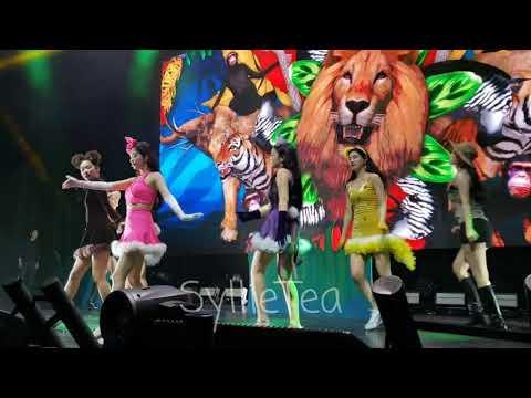 FANCAM - Zoo - Red Velvet REDMARE in Chicago 2019 (Front row)