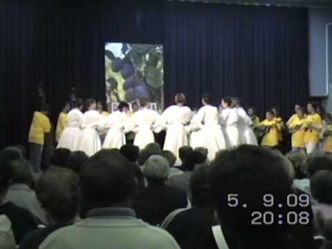KUD Kamen Sirač, podmladak – koreografija na Danima šljiva u Siraču 2009.