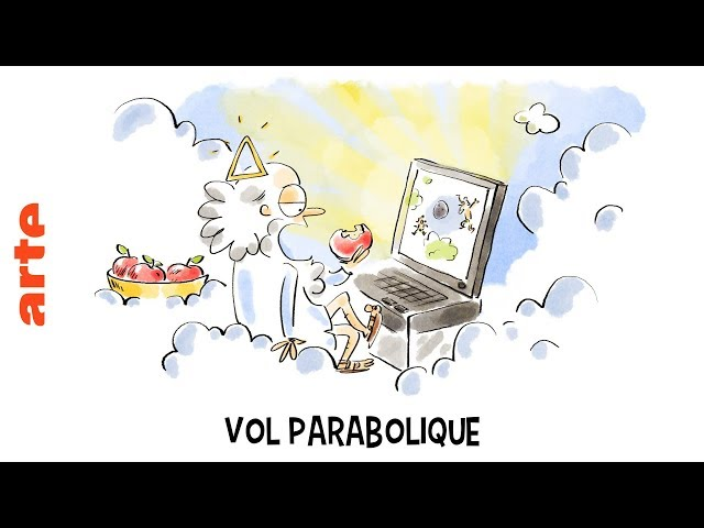 Vol parabolique - Tu mourras moins bête - ARTE