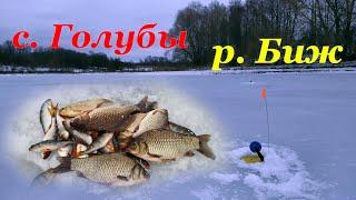 КАРАСИ в последний день зимы Плотва и окушки Жерлицы
