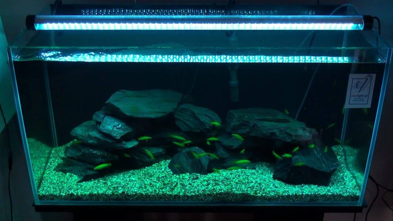 aquariumleuchten oder lampen