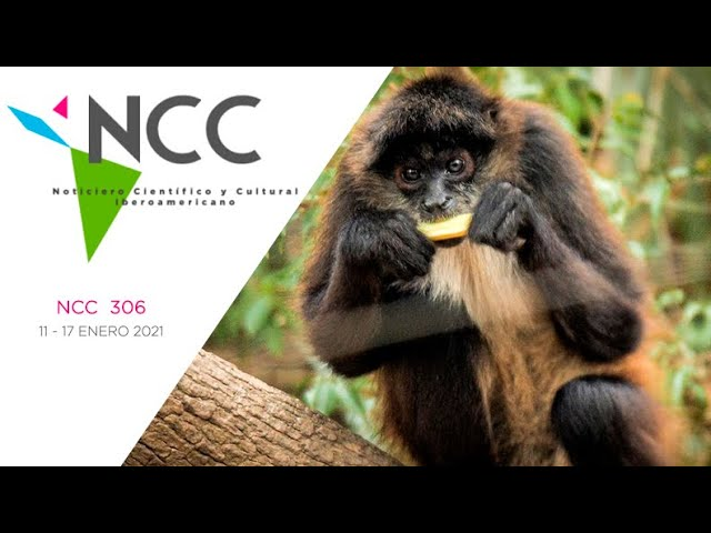 Noticiero Científico y Cultural Iberoamericano, emisión 306. 11 al 17 de enero 2021