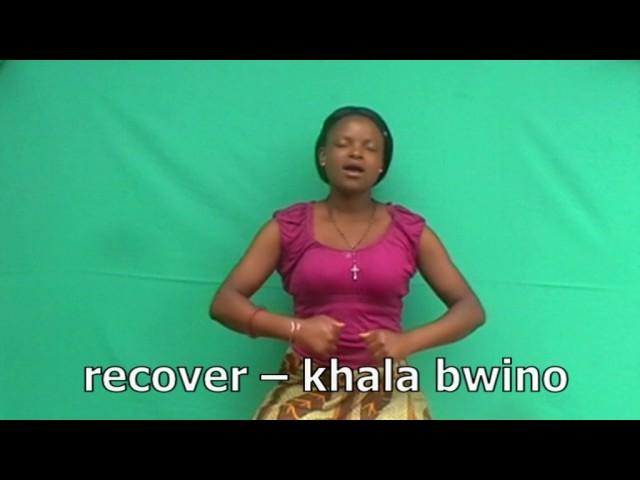 Malawian Sign Language -English-Chichewa R