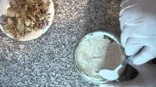 Рецепт соус для шаурмы