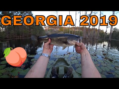 Primer - Georgia Fishing Trip 2019 - Bass Fishing Georgia Ponds