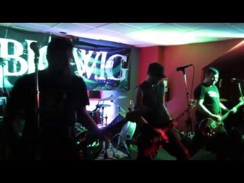 Bigwig - 'Sink or Swim' live at Heart of Gold Fest