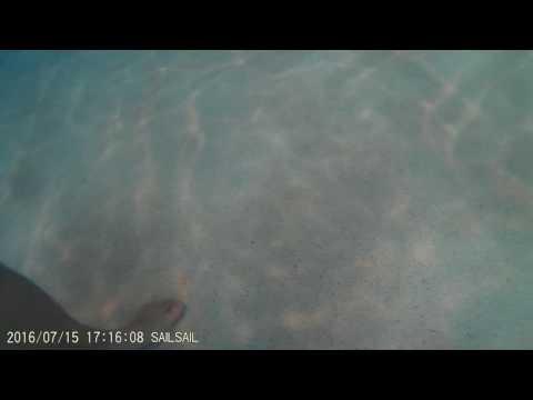 Evergreen Aviation Park Wave Pool Crap