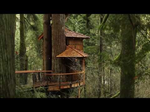TreeHouse Point | a Wanderfoot Adventure in the Pacific Northwest