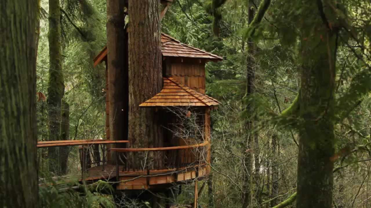 Treehouse Point A Wanderfoot Adventure In The Pacific Northwest