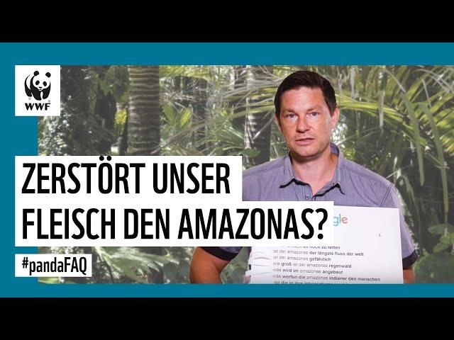 Der Amazonas brennt! Was hat das mit unserem Fleisch zu tun? #PandaFAQ