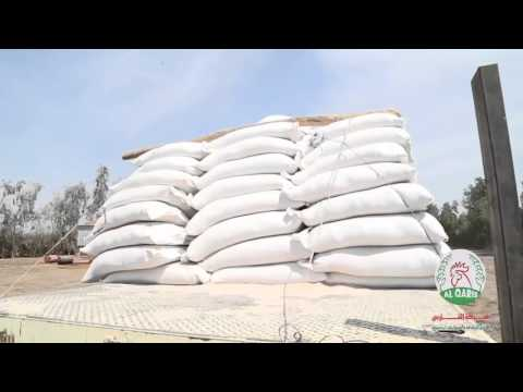 AlQaris Co. for Agriculture & Animal Production