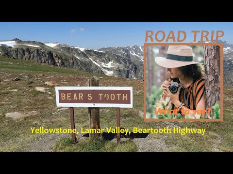 WHAT TO SEE: Yellowstone, Lamar Valley, Beartooth Highway