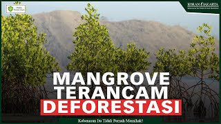 Mangrove Terancam Deforestasi