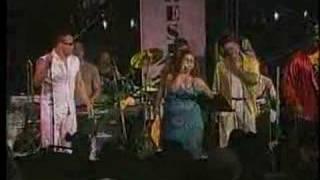 Mi Mimi - Los Van Van (live)