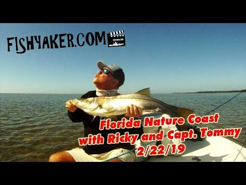 Florida Nature Coast Fishing, With Captain Tommy Scarborough: February 22, 2019