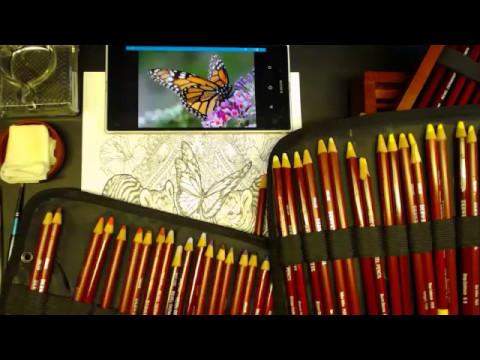 derwent pastel pencils in Bennett Klein WILD