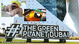 The Green Planet  #dubai | Sloth | الكتبي | City Walk Dubai