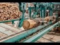 Bulgarian Woodworking Enterprise Processes Small Logs With The Innovative Wood-Mizer's SLP2 Line