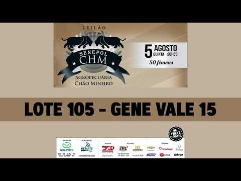 LOTE 105   VALE 15 DA GENETROPIC