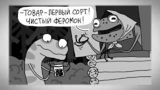 Комикс  Обоняние  Все как у зверей ¦ Живая Планета