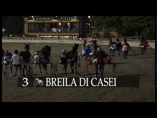 Ippodromo di Cesena | Presentazione Gran Premio Città di Cesena - Città di Cesena Filly 2020