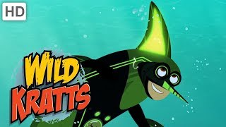Wild Kratts 🐬🦈🐙 Creature Powers in the Ocean! | Kids Videos