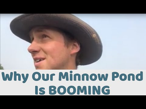 Aquaculture: Why Our Minnow Pond Is Booming S1•E7