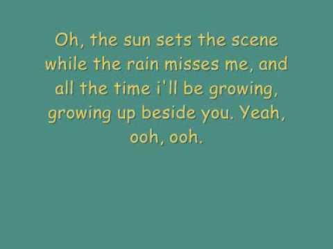 Paolo Nutini - Growing up beside you With lyrics