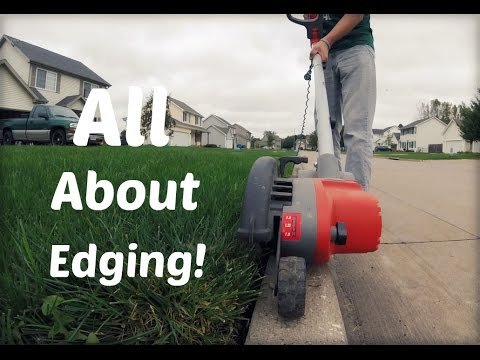 Lawn Update 25 - All About Edging
