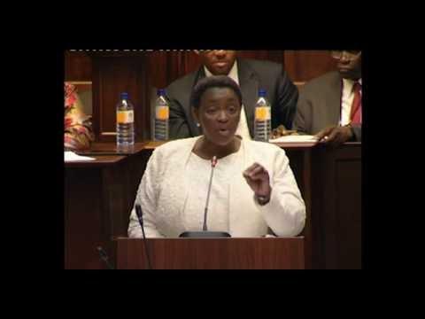 Debate on Vote 17: Social Development (OAC)