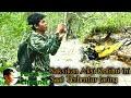 Menjebak Burung Kolibri Pakai Jaring  Mp3 - Mp4 Download