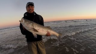 A CHANCE for Stripers & A MOST GRACIOUS Host - Surf Fishing for BIG Striped Bass