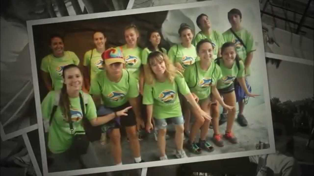 Wild Florida Busch Gardens Camp YouTube