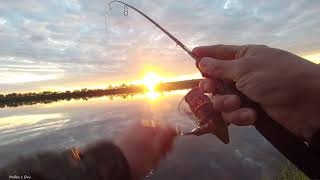 Рыбалка на микроджиг с берега Она просто косит окуней 1
