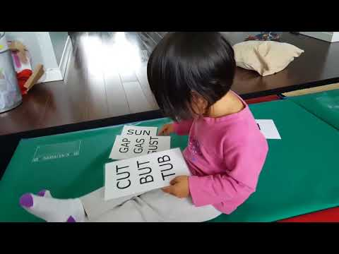 How To Raise A Smart Toddler/Genius Toddlers/How To Make Your Toddler Smarter/My 2 Year Olds Reading