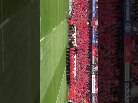 Munster v Glasgow stand up and fight Oct '16