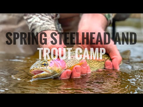 Spring Steelhead And Trout Fishing In Michigan!