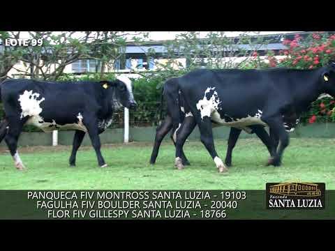 SANTA LUZIA   LOTE 99