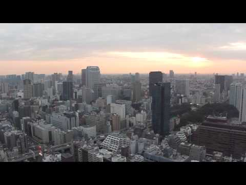 View From The Tokyo World Trade Centre Observatory