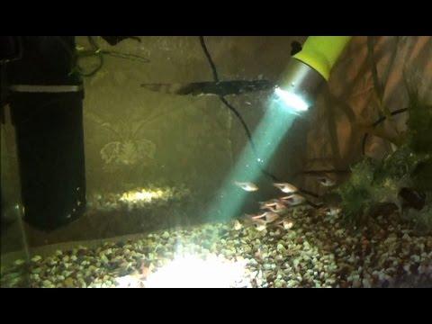 Фонарь подводный SARGAN ФИЛИН 220lm (до 60 метров) - YouTube